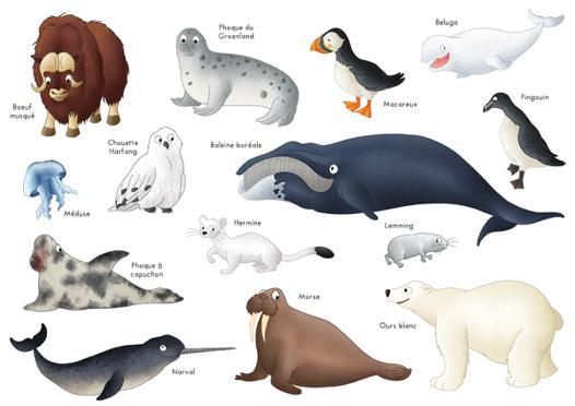 animaux du pole nord