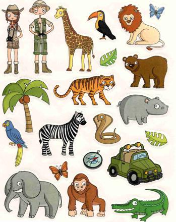 animaux jungle