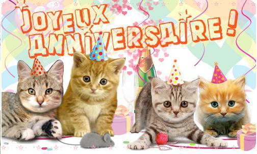 anniversaire chat gif