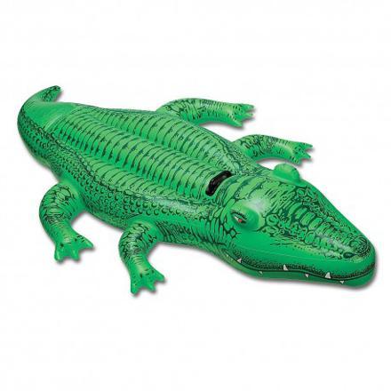 bouée crocodile