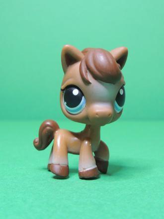 cheval petshop