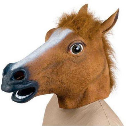 cheval tete