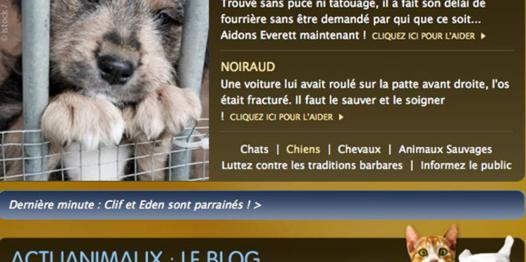 clic pour animaux