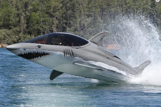 jet ski requin