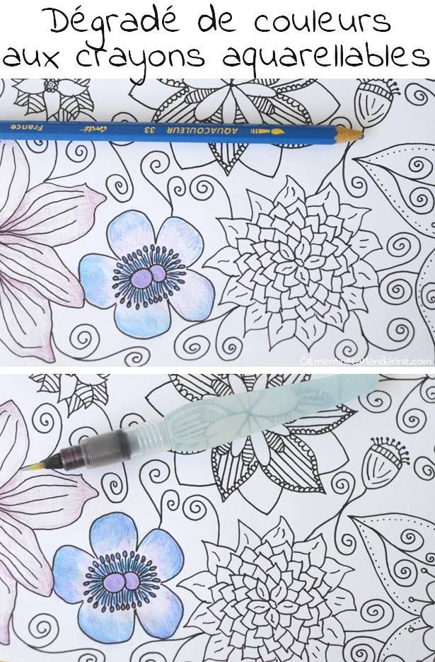 coloriage aquarelle adulte