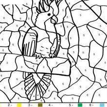 coloriage magique gratuit en ligne