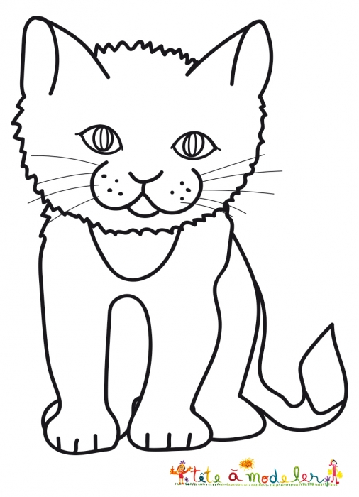 coloriage petit chat
