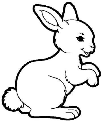 dessin lapin rigolo