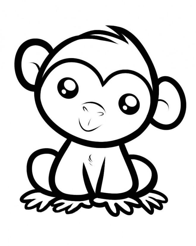 dessin petit singe