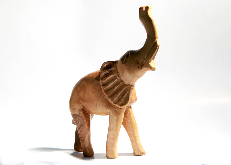 elephant bois