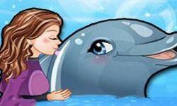 jeux de dauphin 8