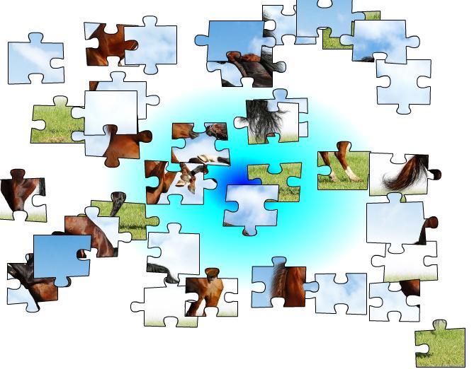 jeux de puzzle de cheval