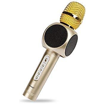 karaoke micro