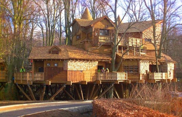 maison sur arbre