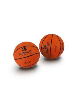 mini ballon basket