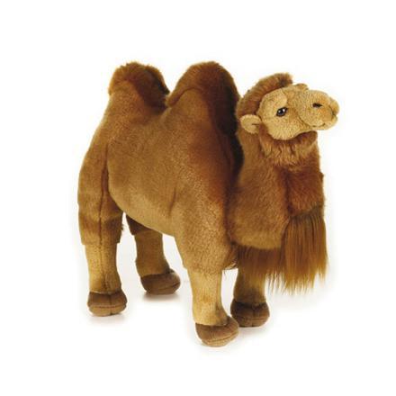 peluche chameau