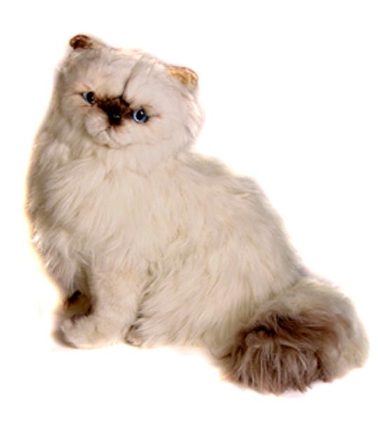 peluche chat persan