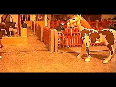 playmobil video cheval