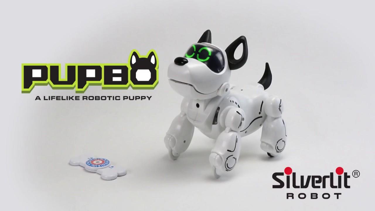 pupbo chien