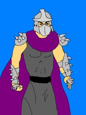 schneider tortue ninja