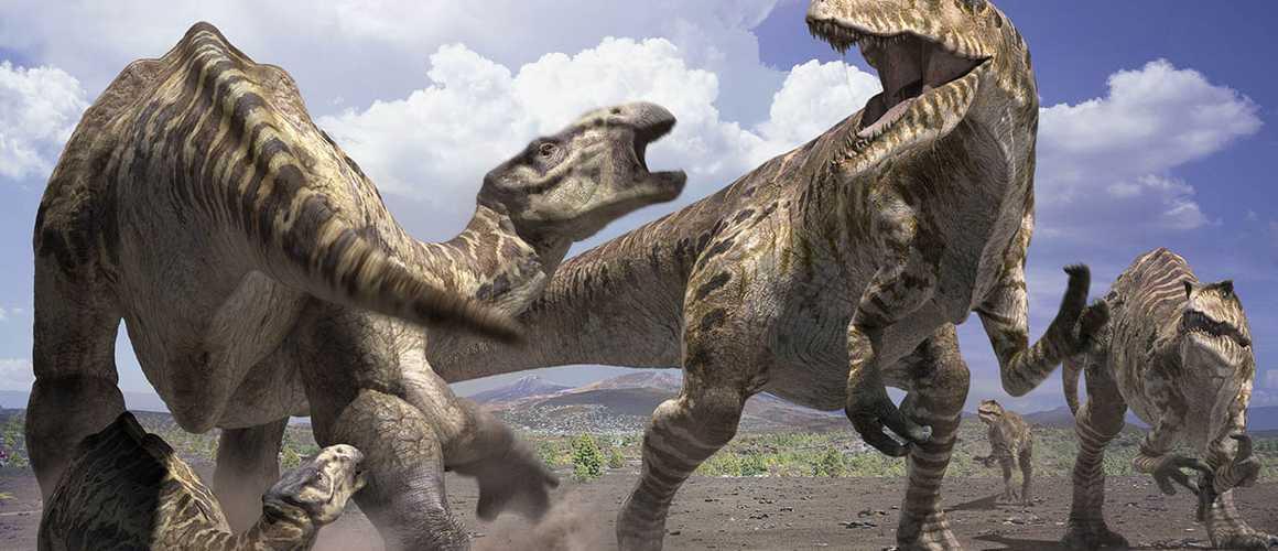 sur la trace des dinosaures